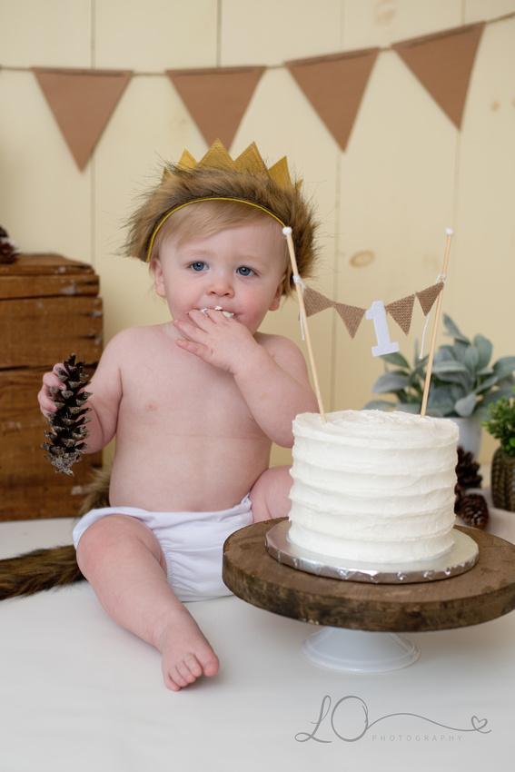 Where the Wild Things Are Cake Smash, Cake Smash Photographer Maine, Maine Children's Photographer